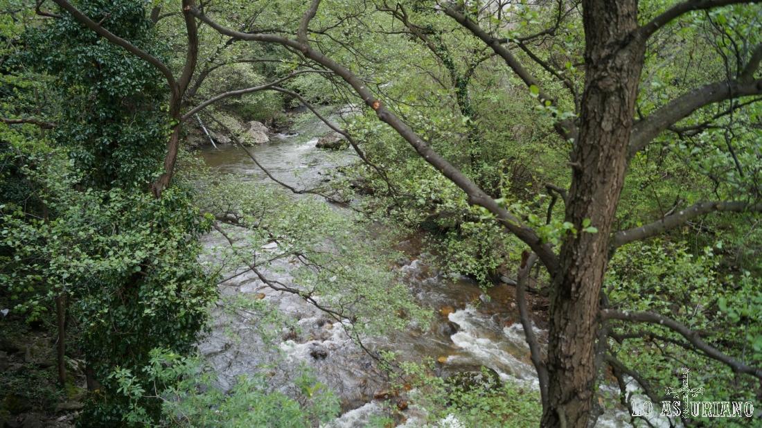 El río Teverga.