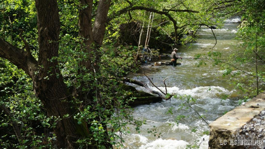 Pescador en el río Teverga.