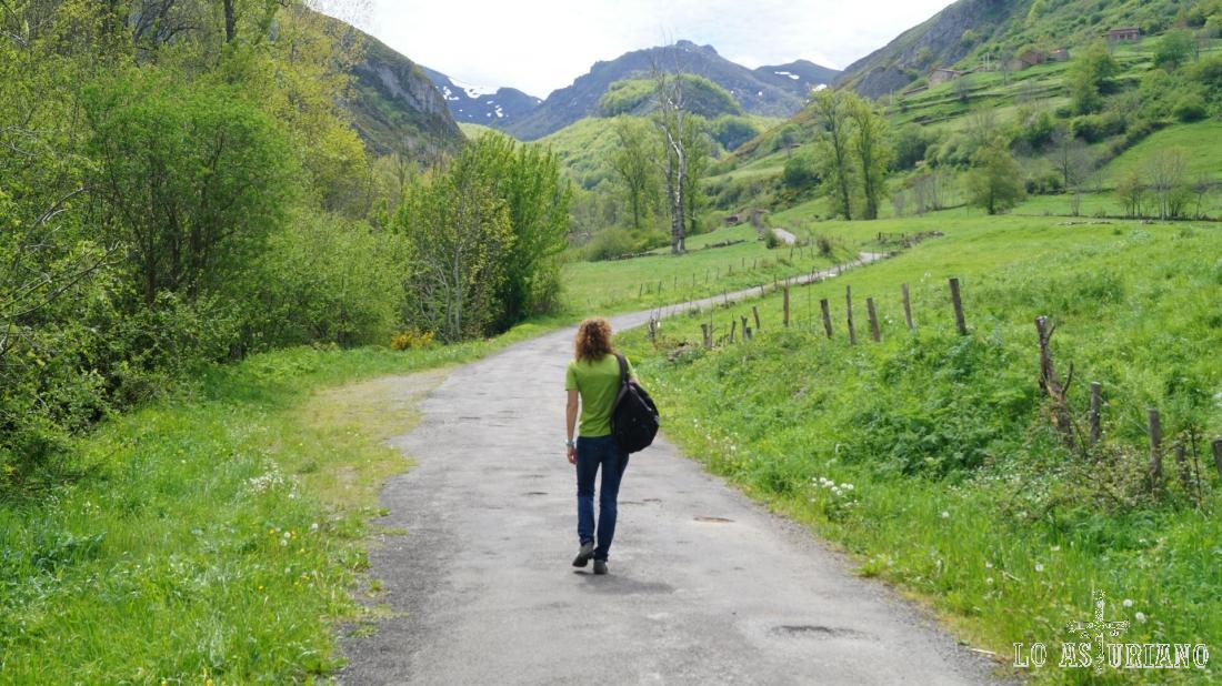 Las cimas del fondo, nos dan límite con el valle de Pigüeña. Es posible pasar a ese valle por el collau Cerréu.