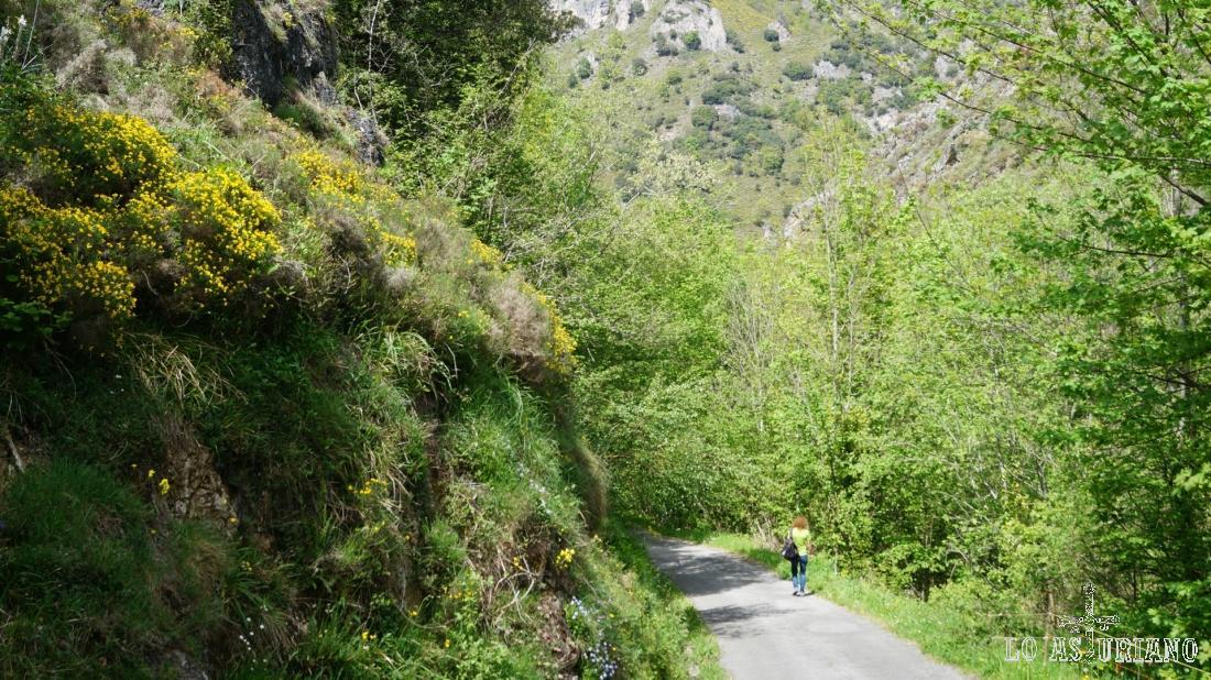 """En el Parque Natural de Somiedo tienes infinidad de sendas, caminos, carreteras o pistas en los que """"perderte""""."""