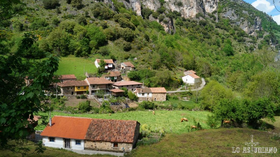 Nosotros vamos hacia arriba por carretera y el arroyo Aguino, sigue el valle (entre las vacas y las casas) y baja hacia el río Somiedo.