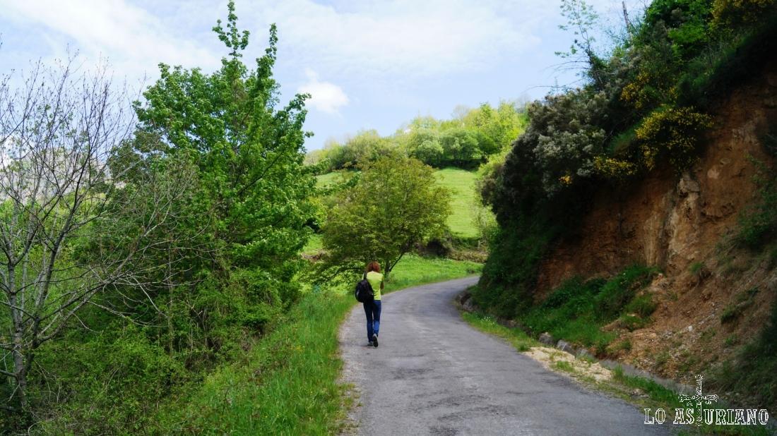 Subimos por la pindia carreterina, dirección a la collada.