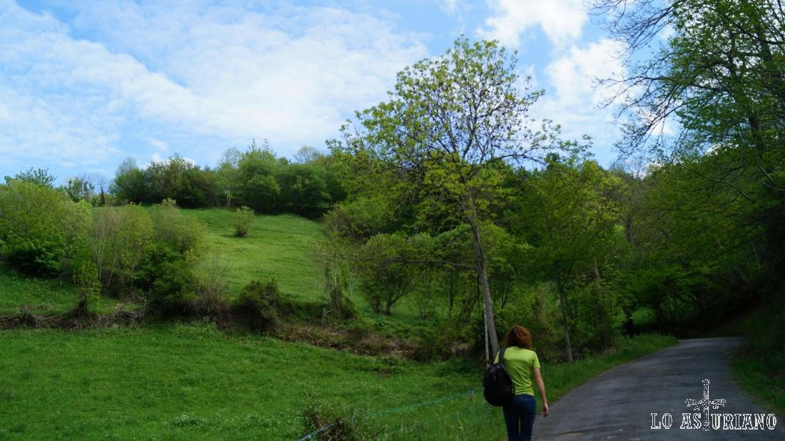Las praderías de Aguino, camino de la collada, fantástico mirador de la zona.