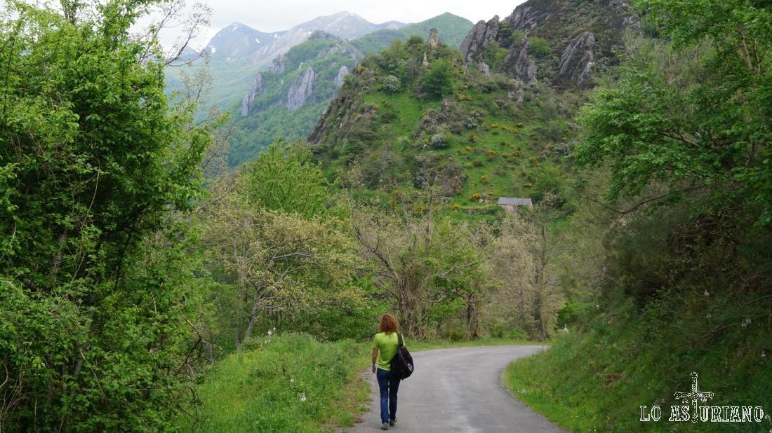 El suave descenso por carretera hacia Pola de Somiedo.