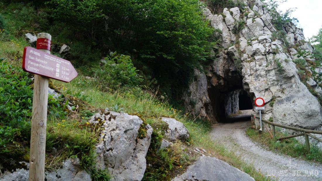 Vamos dirección al túnel, que nos irá alejando rápidamente de la carretera.