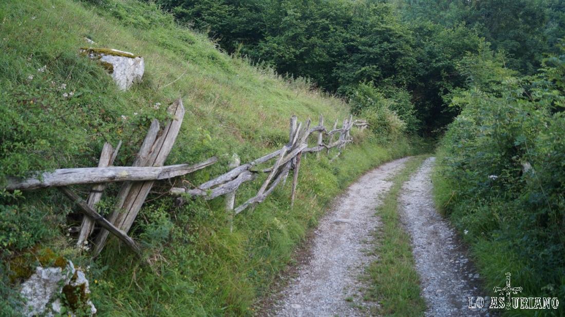 El camino sube paralelo al vallecito de El Regueiro, y poco a poco se irá adentrando en el bosque de Pando.