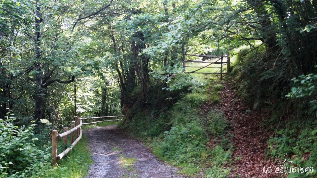 Los caminos laterales llevan a los praus adyacentes a nuestro camino.