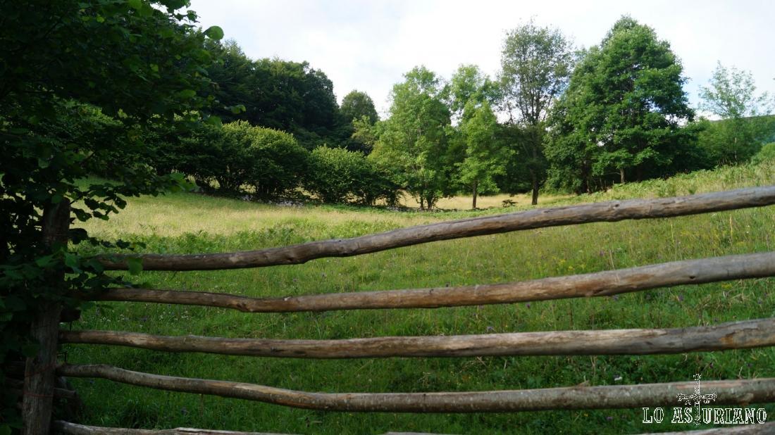 Vallados de madera, accesos a los prados privados.