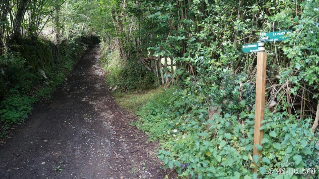 Como ves, hay muchas marcas en el camino, coincidentes con la senda del castillo de Alesgas.