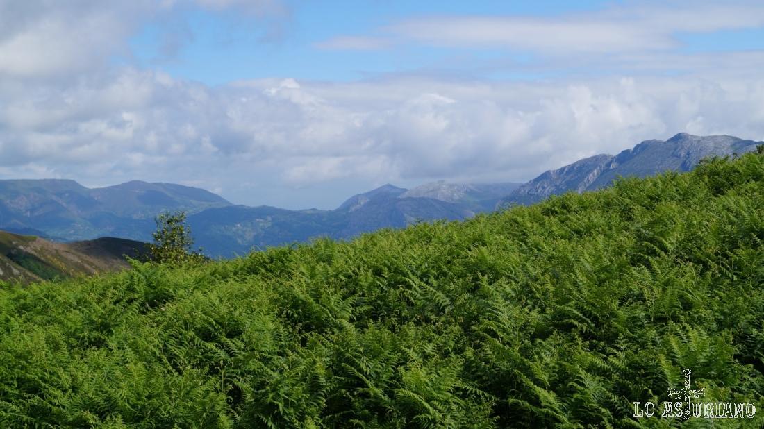 Mirando para las cimas de Teverga y de Yernes y Tameza.