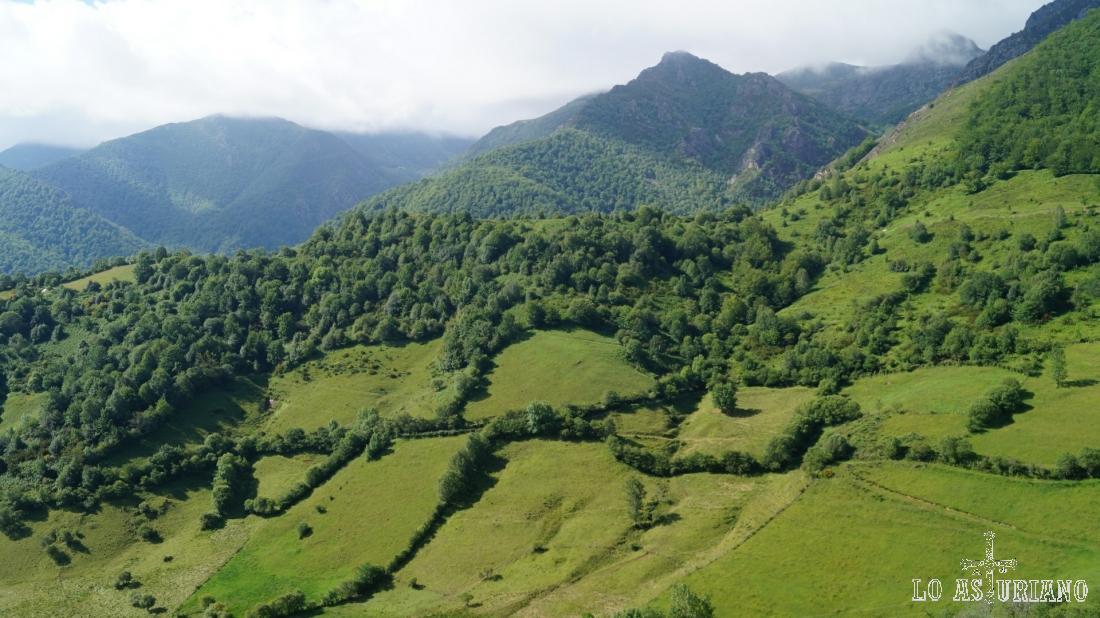Al fondo, el hayedo de Montegrande, subiendo hacia la peña Vigueras.