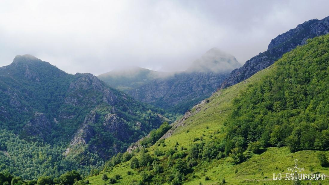 El hayedo de Montegrande y nubes sobre las Ubiñas.