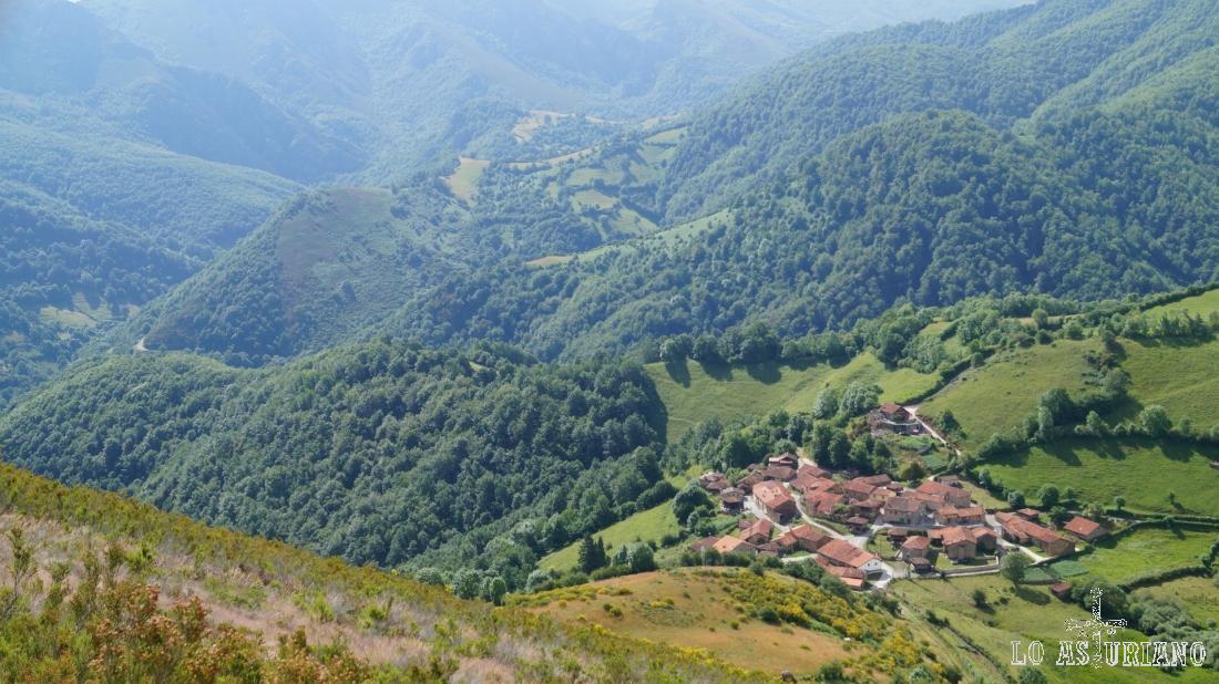 Primer plano de Fociella en este espectacular paisaje boscoso de Teverga.