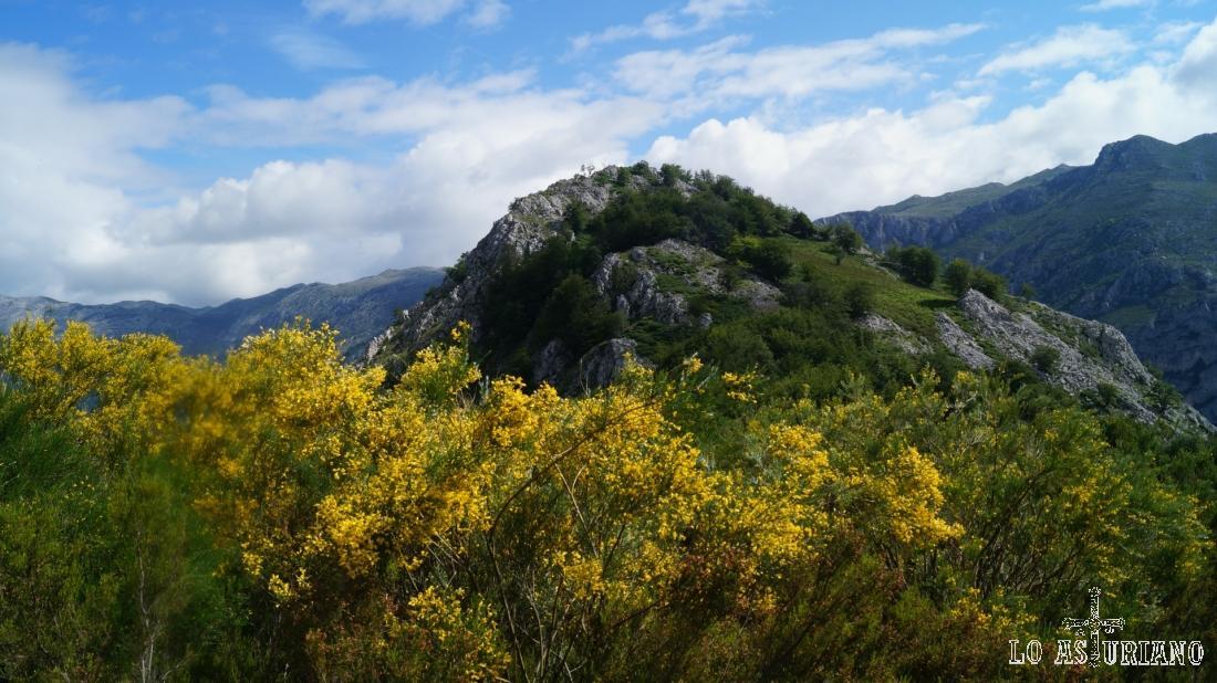 La peña Vigueras la tenemos cerca, pero por la vegetación, el acceso no es tan sencillo.