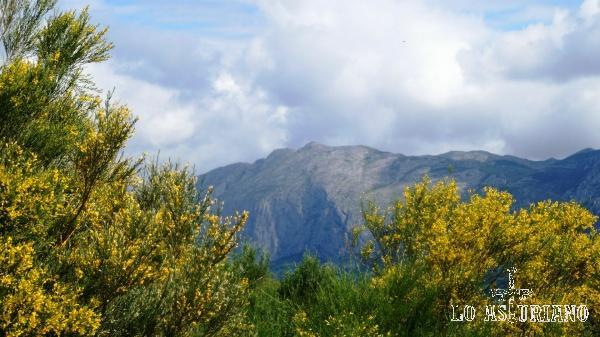 Bonitas vistas del Pico la Siella, en lo alto de la sierra de Sobia.