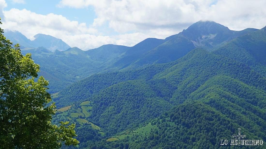 A la izquierda las Ubiñas y a su derecha la Ferreirúa y el hayedo de Montegrande.