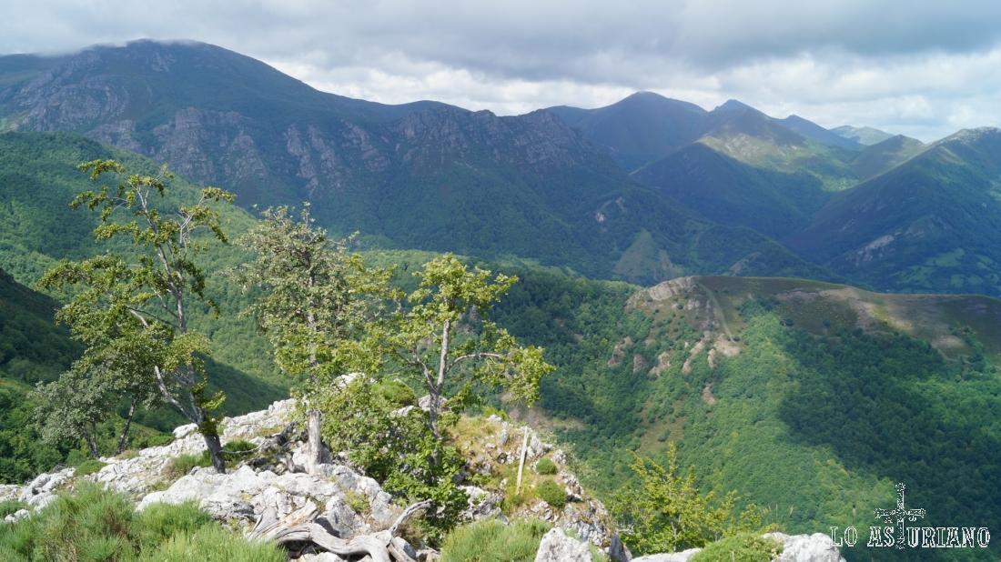 En el horizonte, al fondo, las cimas somedanas, concejo vecino a Teverga.