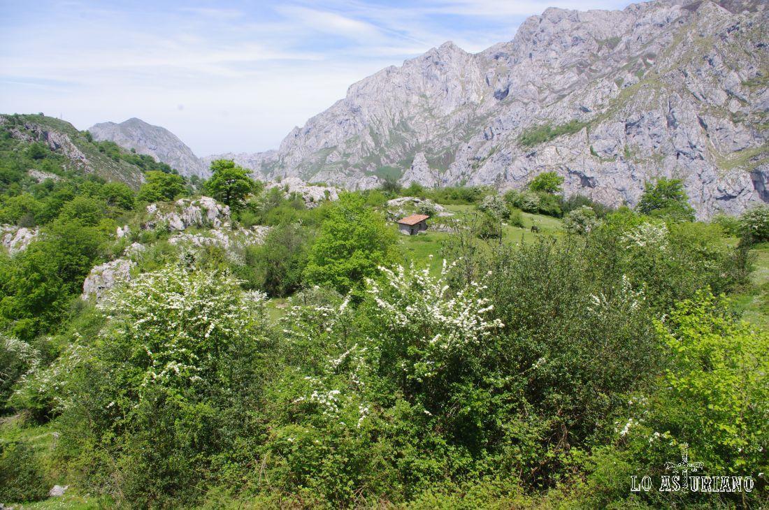 Majada de Bellanzu, a lo lejos, en una primaveral estampa.