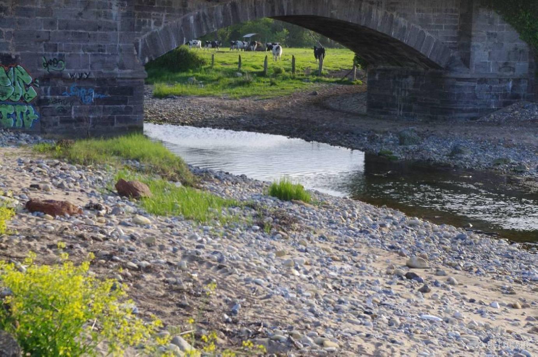 El río Espasa, entrando a la playa de Espasa, bajo el puente de la nacional 625.  Fijáos en las vaquitas, pastando tranquilamente detrás del puente.   Playa y vacas..., dónde sino?...