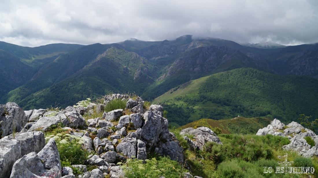 Fantásticas vistas de todo el bosque de Montegrande.