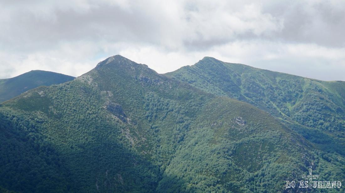 Preciosas cumbres en el boscoso entorno del linde Asturias - León.