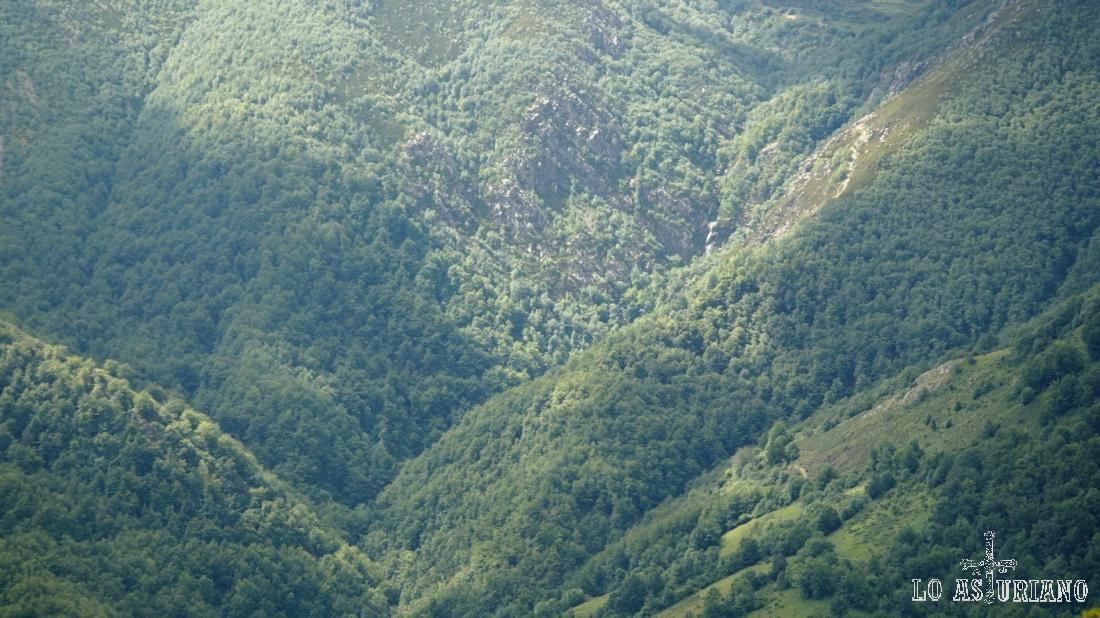 Las entrañas del bosque de Montegrande y la cascada del Xiblu (arriba a la derecha).