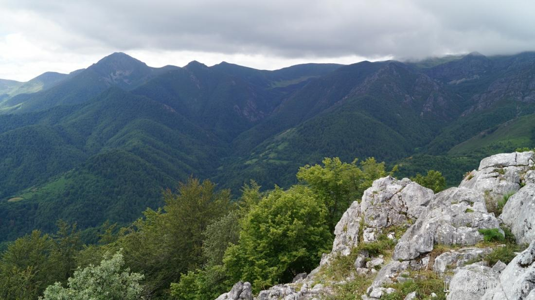 El hayedo de Montegrande desde la cima de peña Vigueras.