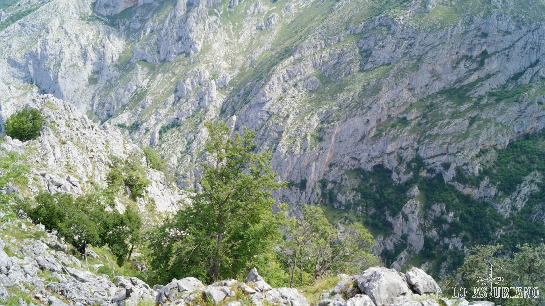 Esta es la importante caída que hay desde la cima, formando el bello desfiladero.
