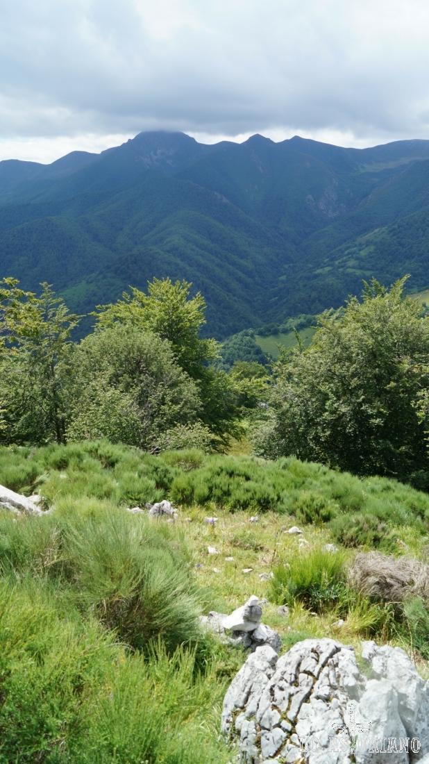 La bajada es un poco aleatoria: por donde las rocas y herbazal nos van dejando.