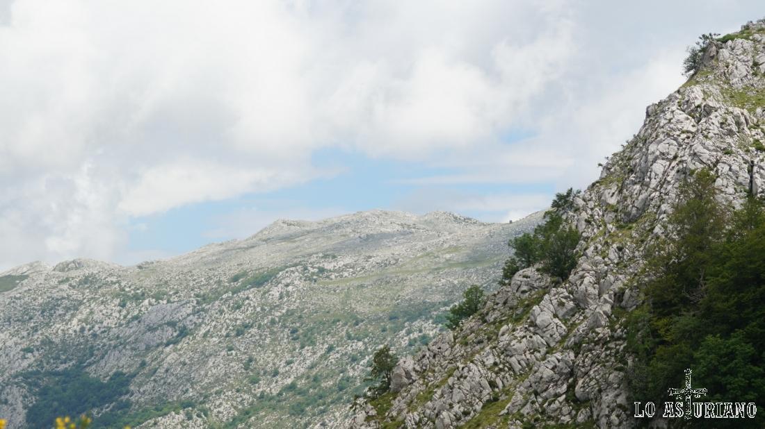 Laderas de la peña Vigueras y vistas a las moles de la sierra de Sobia.