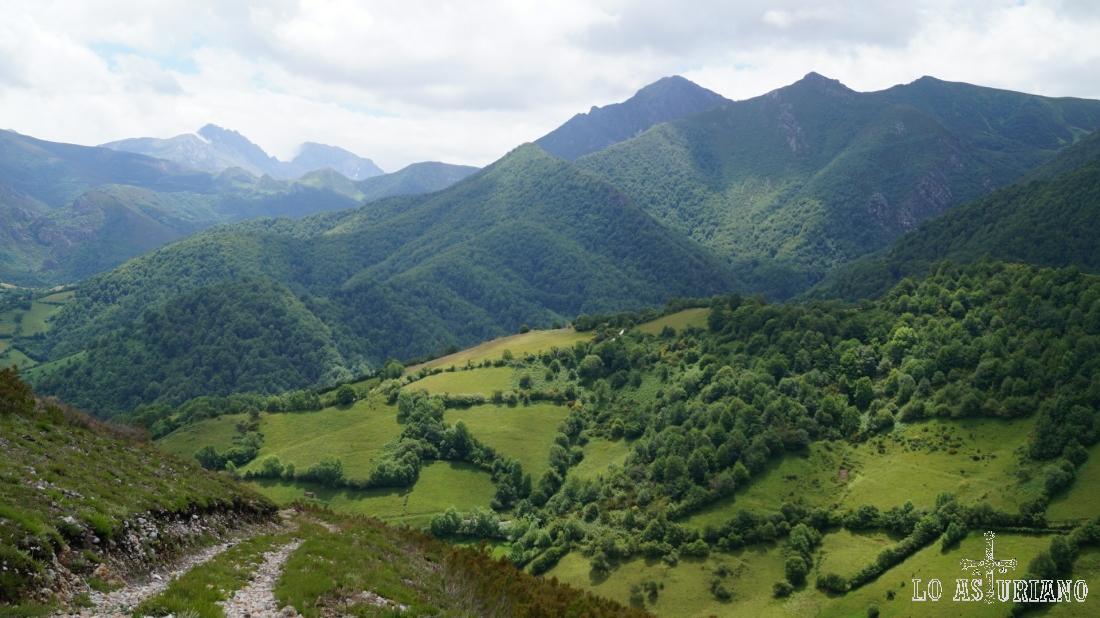 El hayedo de Montegrande y al fondo, las Ubiñas, y a la derecha la cima que corona el concejo de Teverga: Ferreirúa.