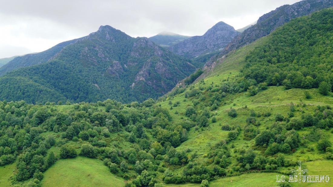 Decimos adiós a los magníficos paisajes teverganos, antes de volver al bosque del Pando.