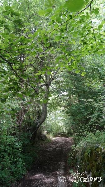 Como te imaginarás, en temporada de lluvias, vas a encontrar estos caminos, con algo de barro y agua.