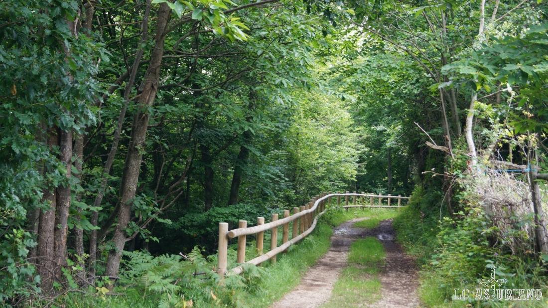Llegamos ya a la parte final del camino, reconocible por la valla de madera.