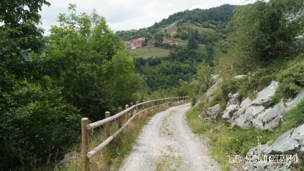 Pista que baja desde el bosque del Pando; vistas a Fresnedo.