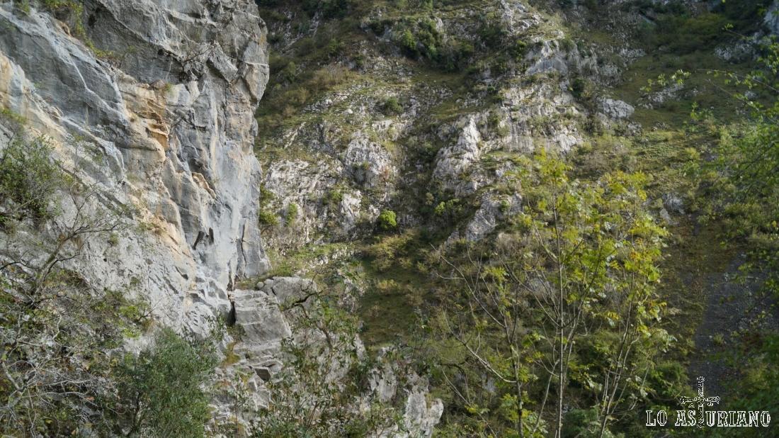 Estamos ascendiendo por una de las laderas del desfiladero de los Beyos.
