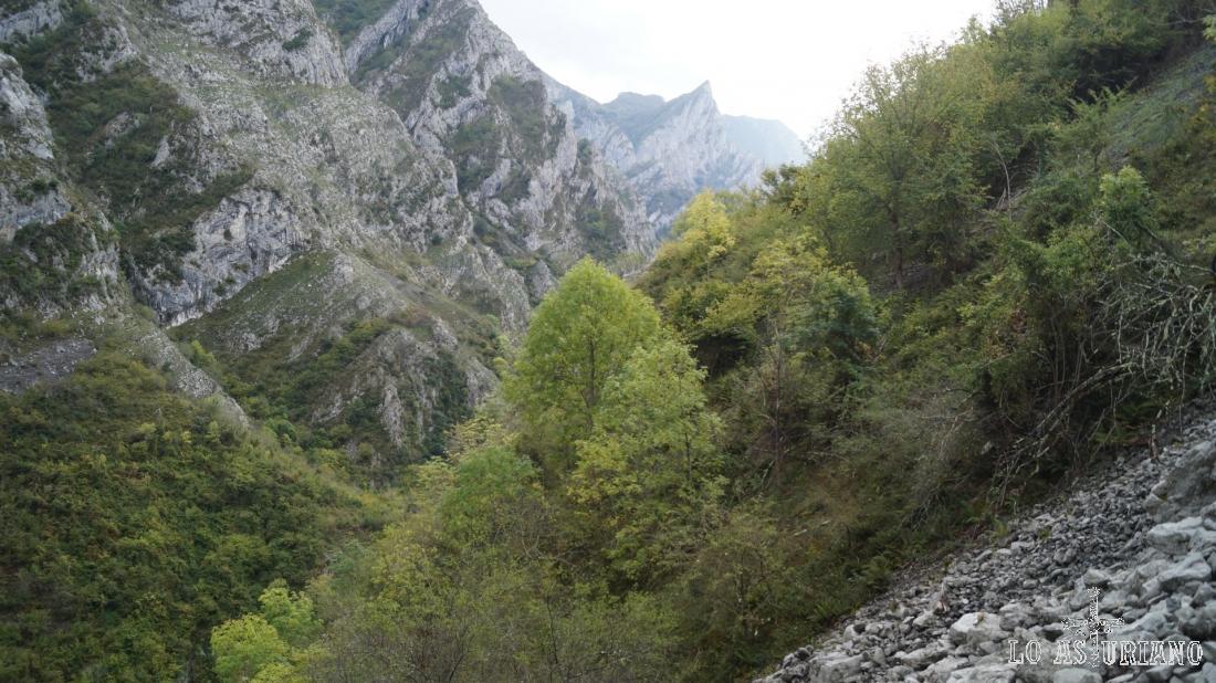 El desfiladero de los Beyos desde la senda del Cartero.