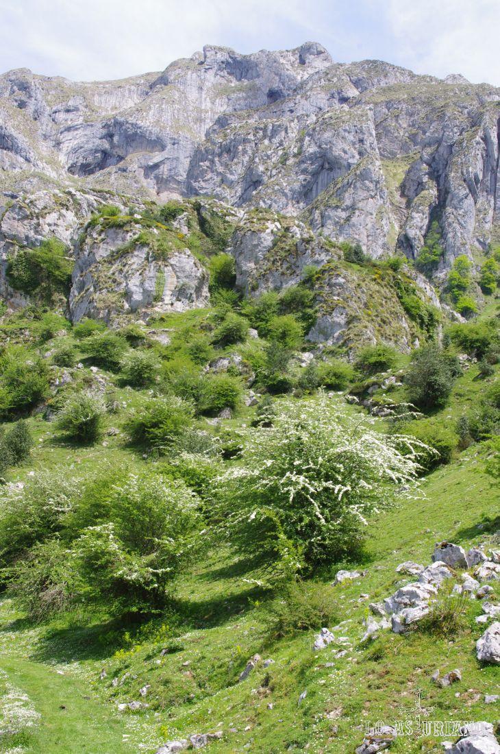 Cantu Bellanzu, que da nombre a la majada, una de las más bonitas de Asturias, que se encuentra a sus pies.