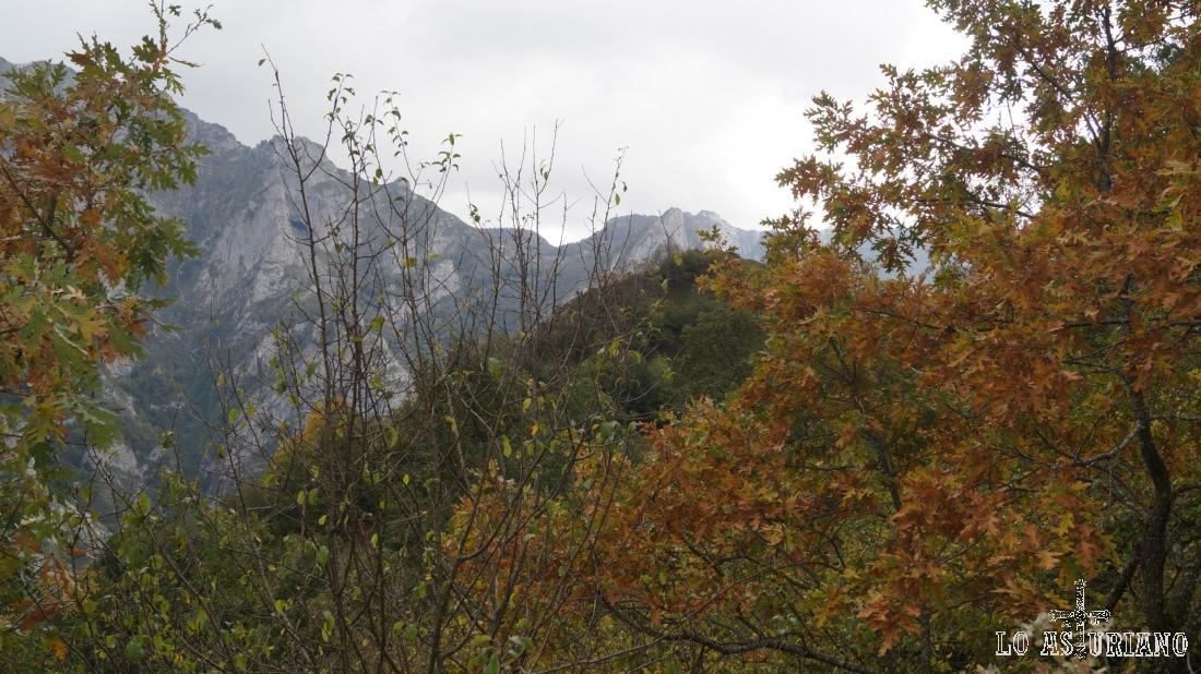 Acompañados de los primeros colores parduzcos del cada vez más retrasado, en fecha, otoño.
