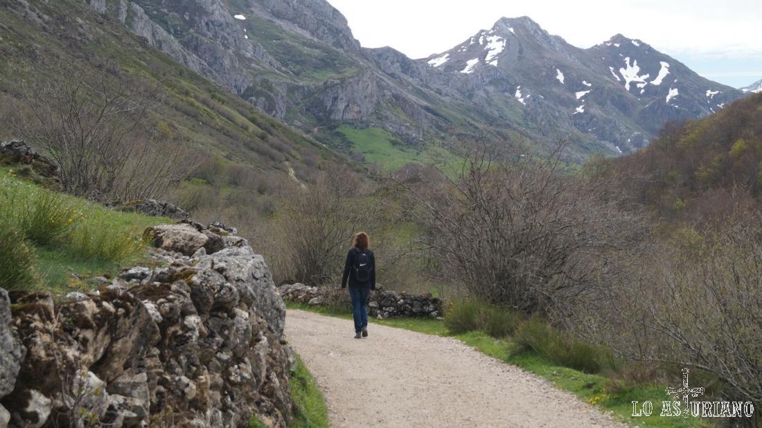 Picos Albos y peña Rubia, al fondo