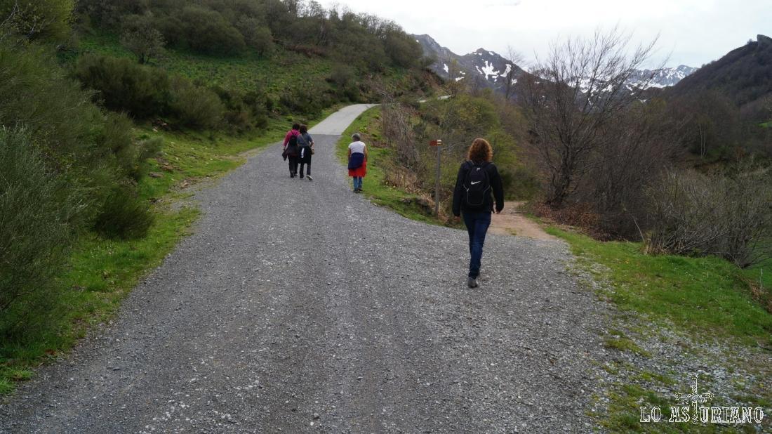 pista a la derecha, hacia el bosque