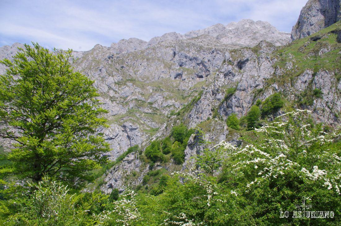 Paisajes de la ruta de la Jocica en primavera.