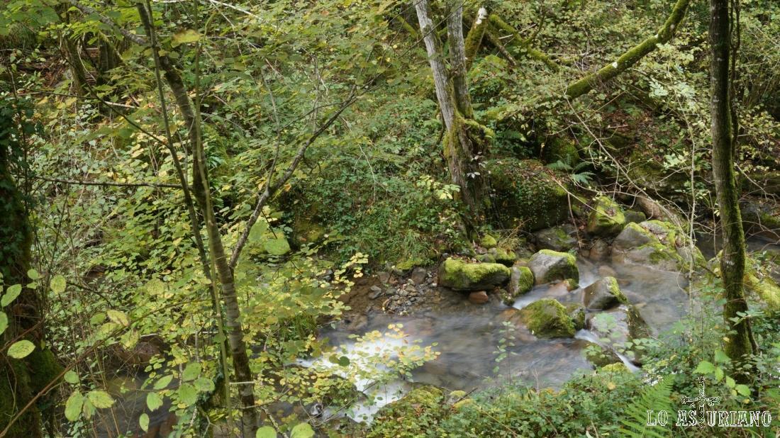 El río Vibolí y su mágico entorno, un lugar que no debes perderte.