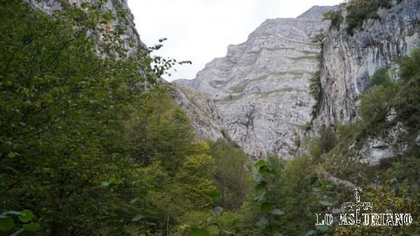 Las paredes del desfiladero de los Beyos desde la foz de los Andamios.