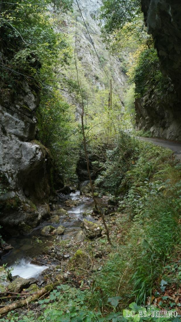 A esta foz de los Andamios, puedes llegar, conduciendo hasta Ponga, y tomando la carretera desde el puente de la Agüera.