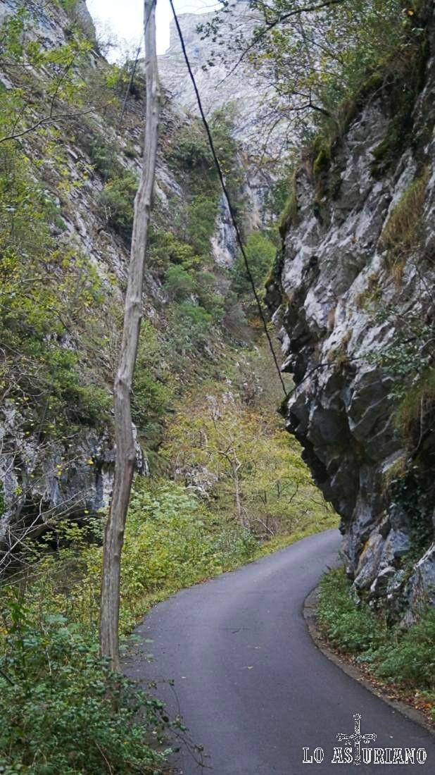 Apenas tenemos km y medio desde el puente del Vibolí hasta puente la Agüera, pero es todo un espectáculo natural.