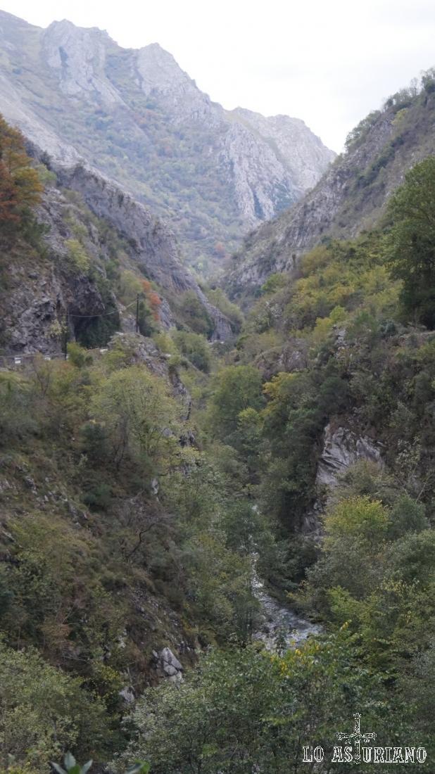 Estribaciones del pico Carriá y en primer término el Sella.