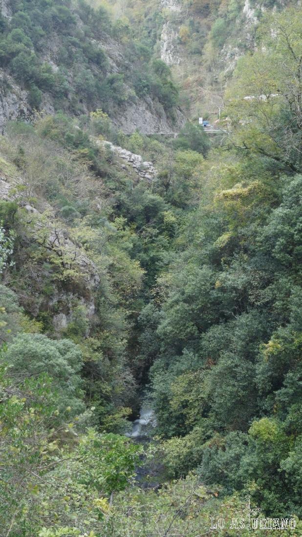 Frondosidad de las riberas del río Sella en el desfiladero de los Beyos.