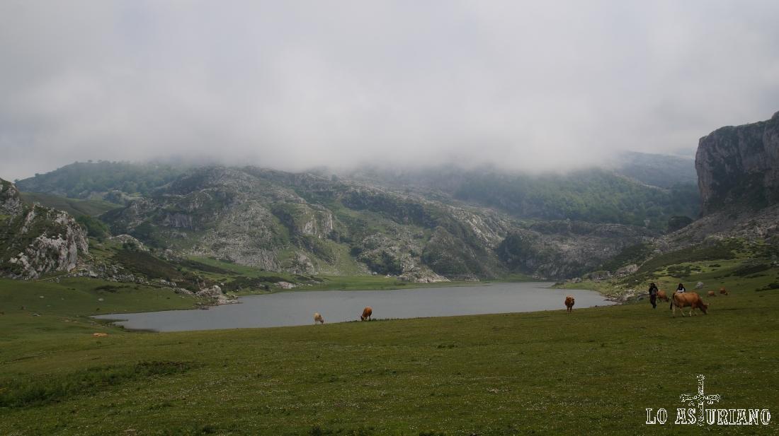 Lago de la Ercina, lagos de Covadonga, Asturias.