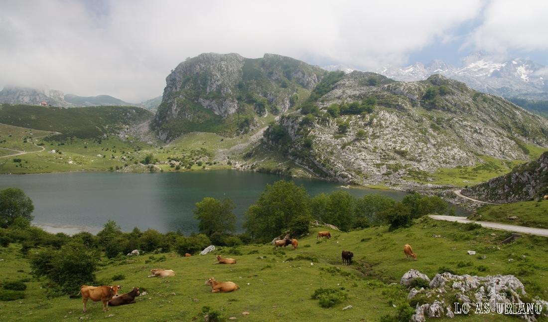 El lago de Enol, lagos de Covadonga, Cangas de Onís, Asturias.